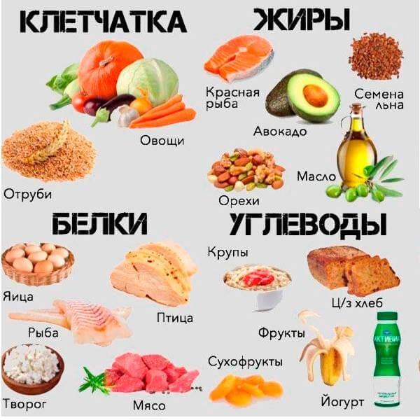 Рациональное питание- сбалансированное питание